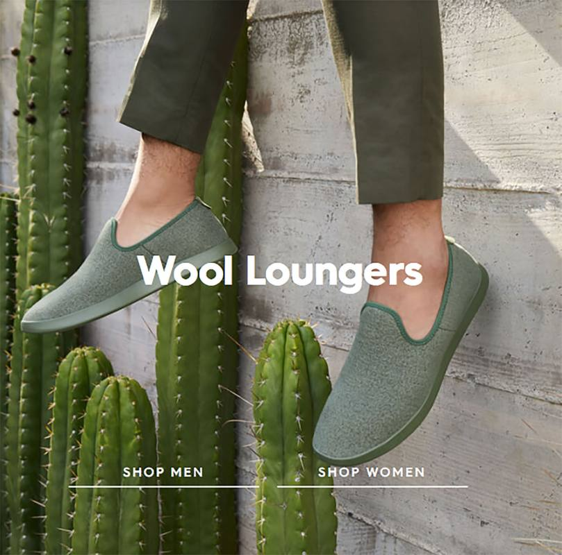 00-allbirds-website-2