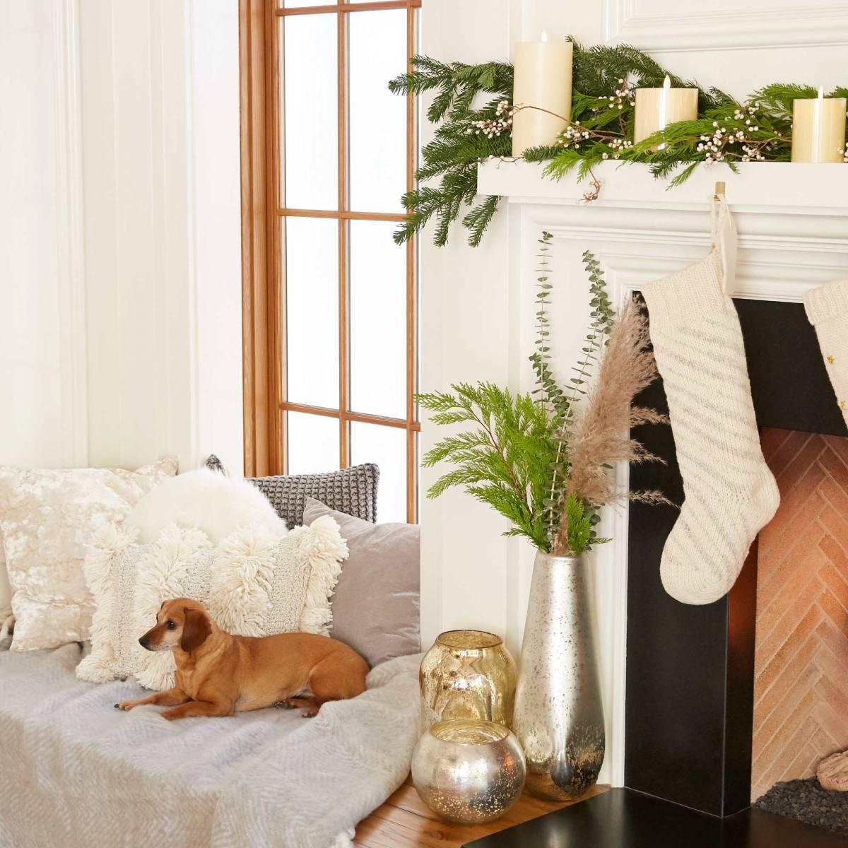 05-eBay_18_November_Social_Cozy_Home_With_Dog_0636