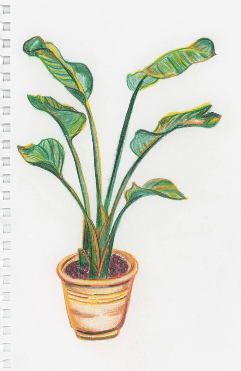 06-drawing001
