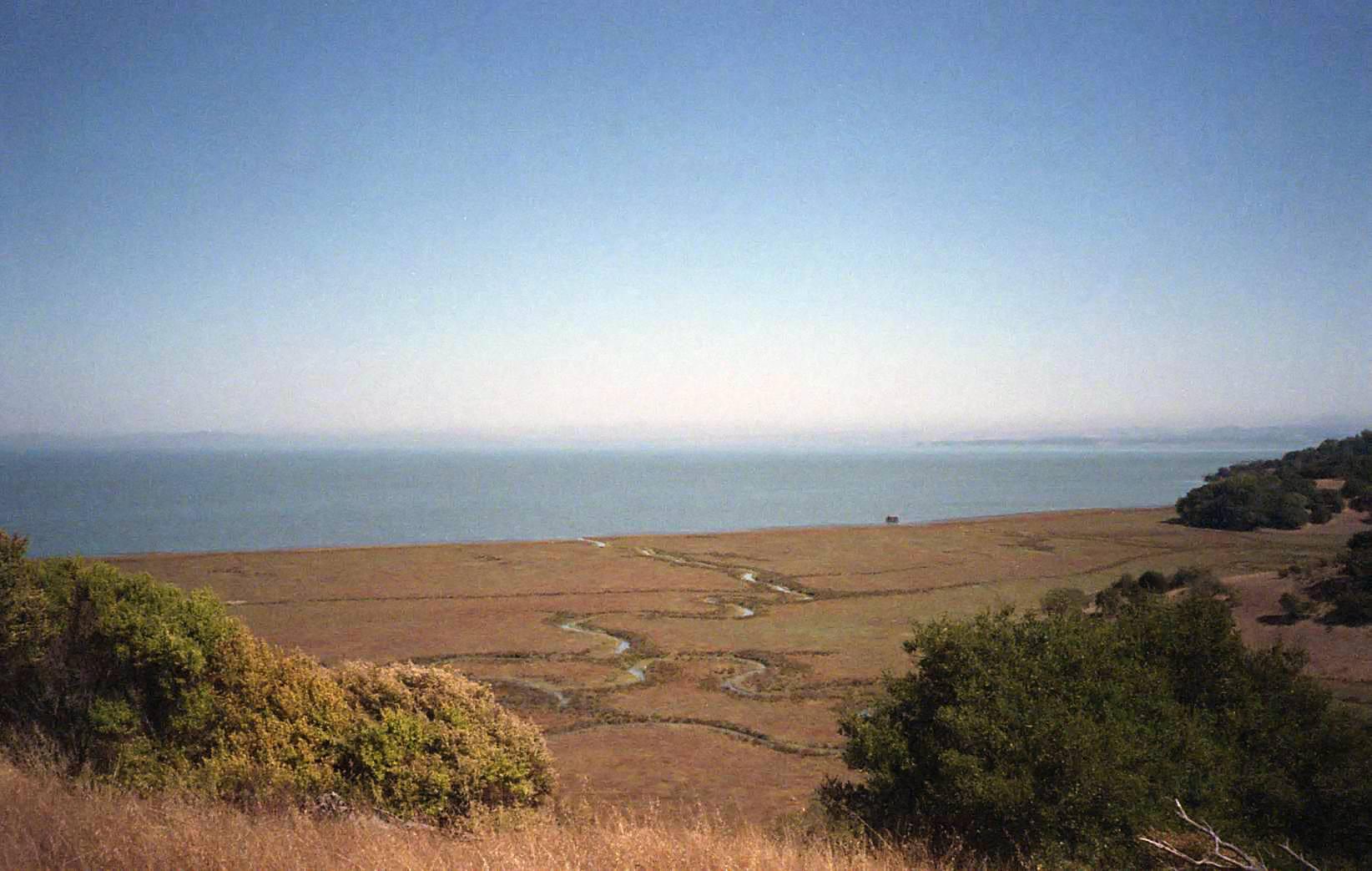 33-marsh